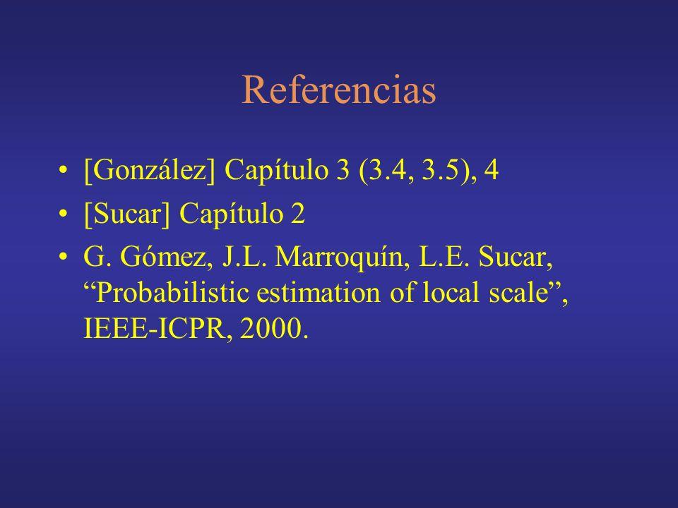 Referencias [González] Capítulo 3 (3.4, 3.5), 4 [Sucar] Capítulo 2